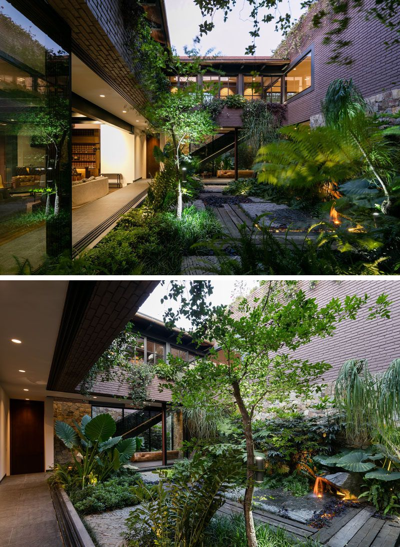 Next to the main living area in this modern house is an internal courtyard filled with plants and a water feature
