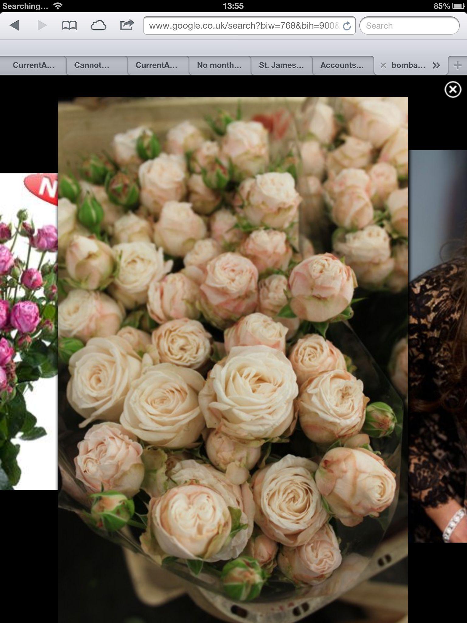 bombastic rose fabulous for hair flowers