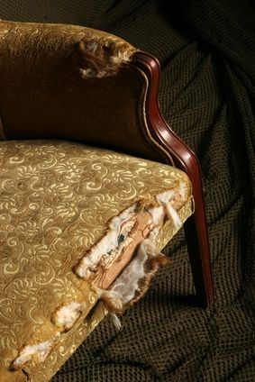 How To Remove Mold Mildew From Antique Furniture With Images