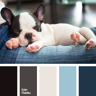 Color Palette 1760 Lazy Dog Breeds Cute Baby Animals Cute Animals