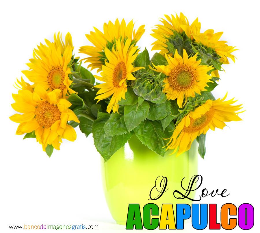 I-Love-Ciudades-Acapulco.png (900×809)