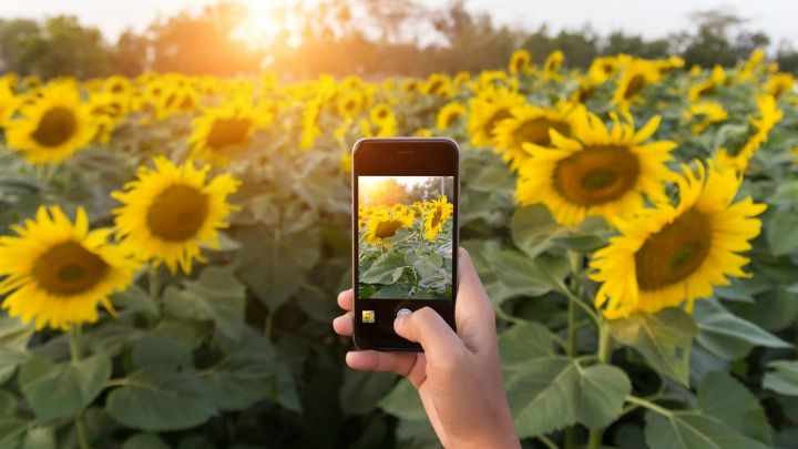 5 tips to take outstanding photos with your iPhone
