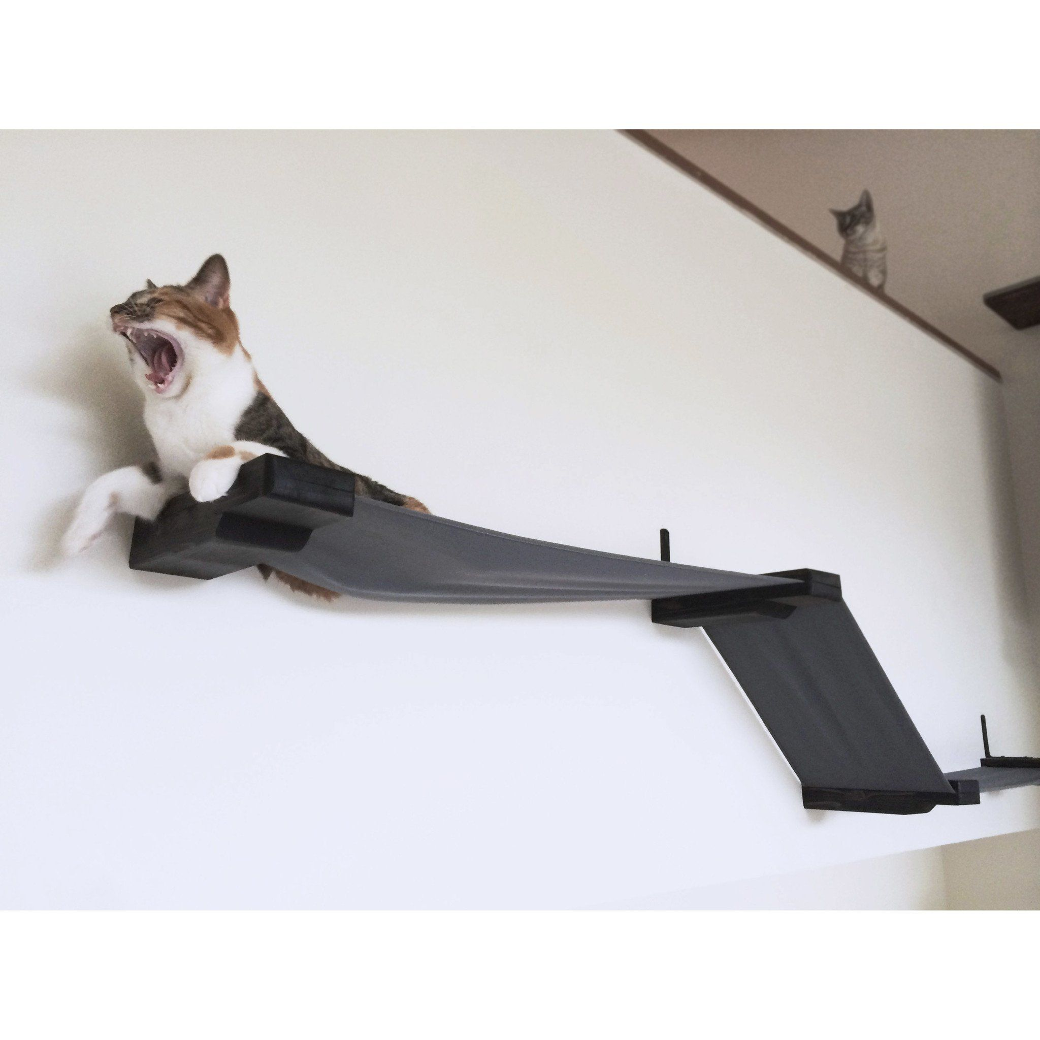 16 Multiple Lounge Cat Perch By Catastrophic Creations