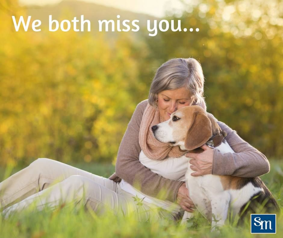 Sometimes We Cheer Each Other Up When The Other Needs It The Most Staying Strong Always Dog Behavior Pet Insurance Reviews Dog Training