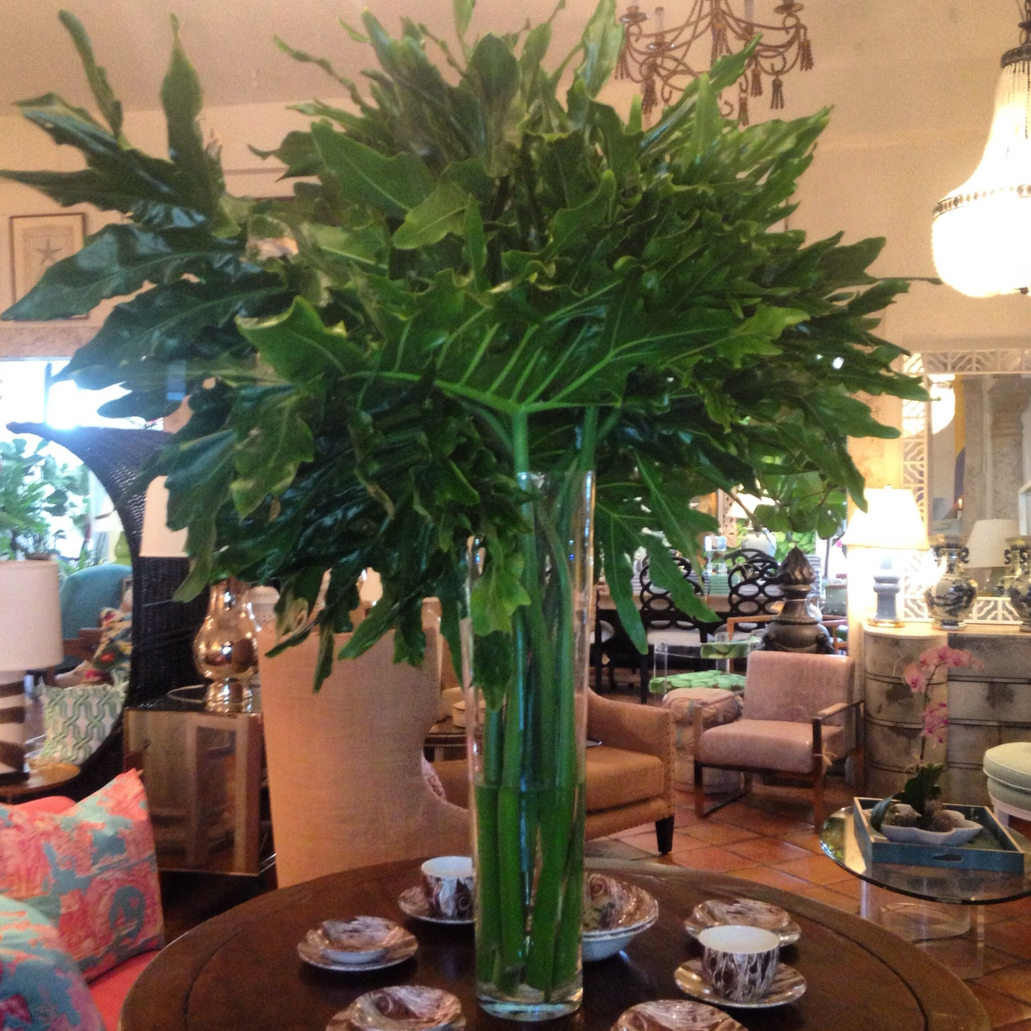 Tall cylindrical #vase with a bountiful green #centerpiece at #PalmBeach #Mecox #interiordesign #MecoxGardens #furniture #shopping #home #decor #design #room #designidea #vintage #antiques #garden