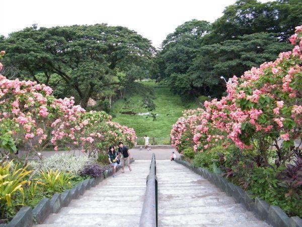 La Mesa Ecopark Quezon City Philippines Masuzette With Images