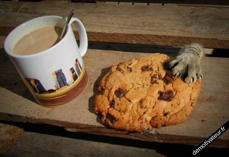 c'est MON cookie