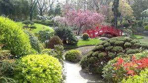 Jardin Japonais Toulouse Recherche Google Jardins Paysage Et