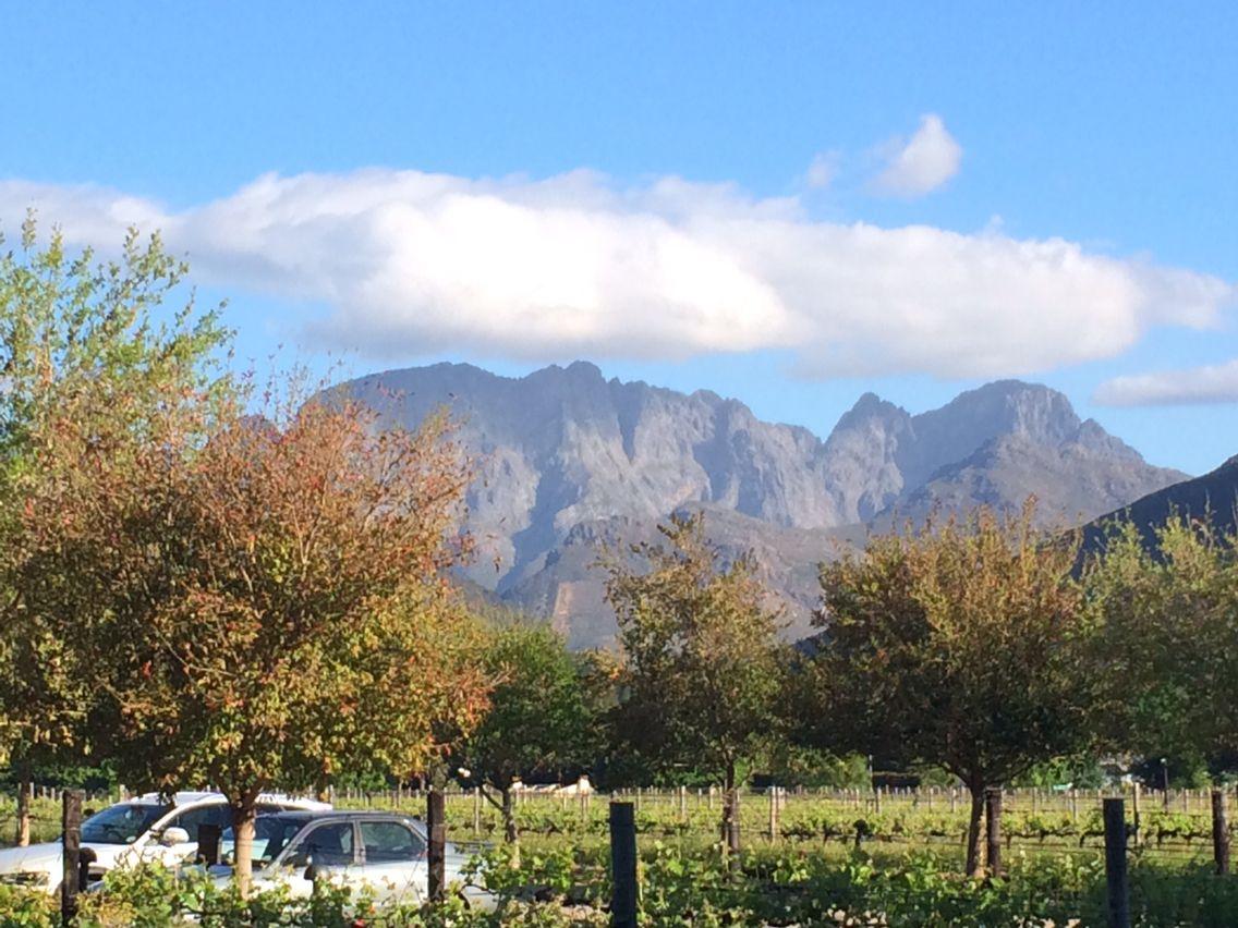 Table Mountain Stellenbosch wine region