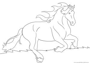 ausmalbild pferd #8 | ausmalbilder pferde, ausmalen