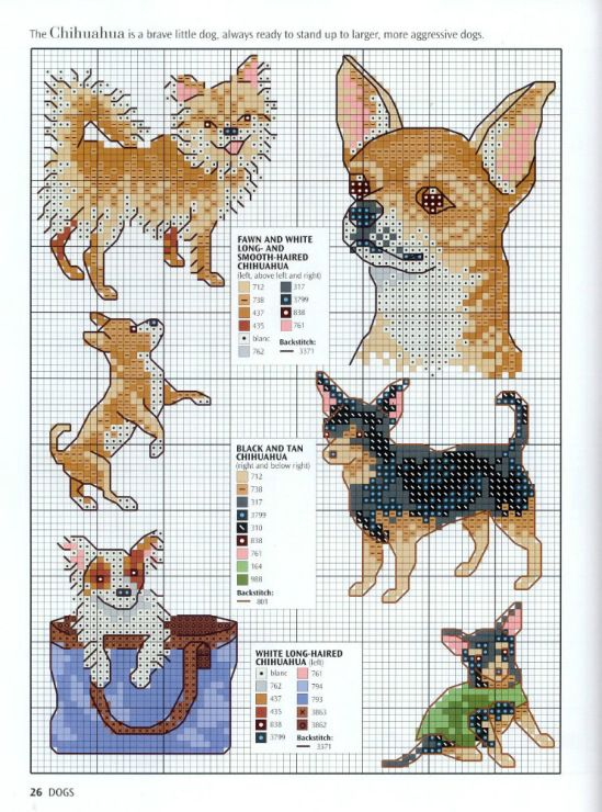 Gallery.ru / Фото #24 - Picture Your Pet in Cross Stitch ...