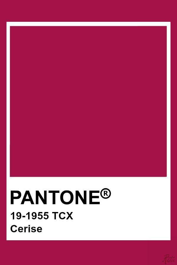 Pin by Ji Lee._. on PANTONE in 2020 | Pantone colour ...