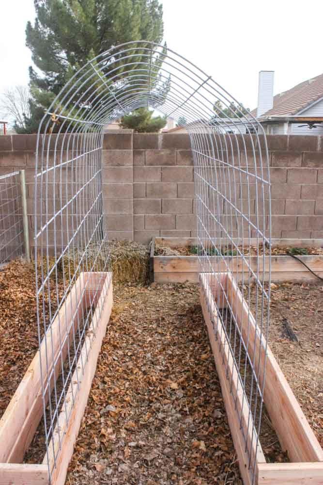 How to make a Trellis & Raised Garden Box Combo | Jardin ...