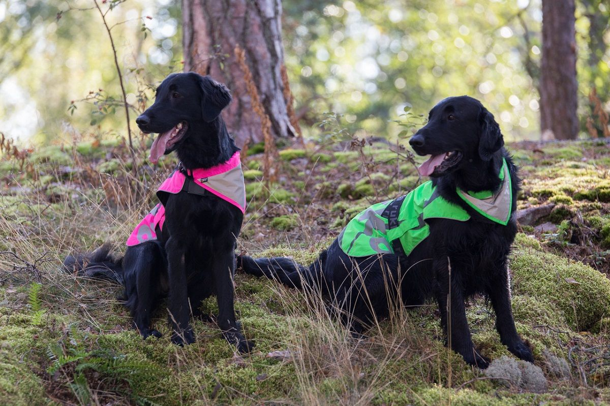 Laadukasta näkyvyyttä lemmikillesi mukavalla ja hengittävällä Rukka Flap heijastinliivillä. / Rukka Pets Flap safety vest with reflective fabric provides extra safety for your dog and visibility during day and night.