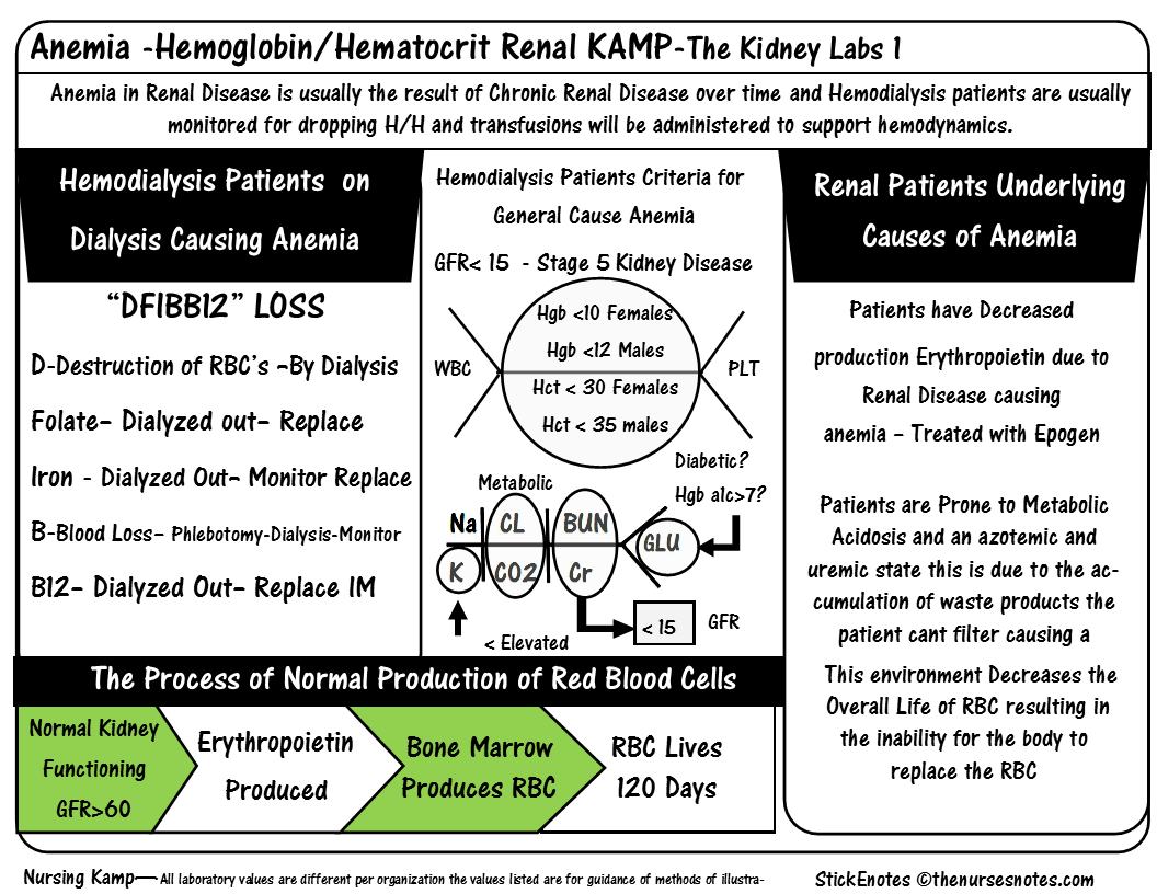 The Acute Book Hemaglobin Hematocrit Renal Stickenotes Nursing Kamp Tws