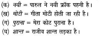 ncert-solutions-for-class-6-hindi-chapter-3-नादान
