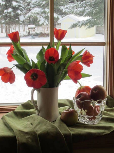 Tulips with fruit - WetCanvas | Reference Image Library