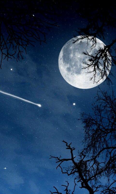 Full Moon Starry Night Sky & a Meteor/ Shooting Star