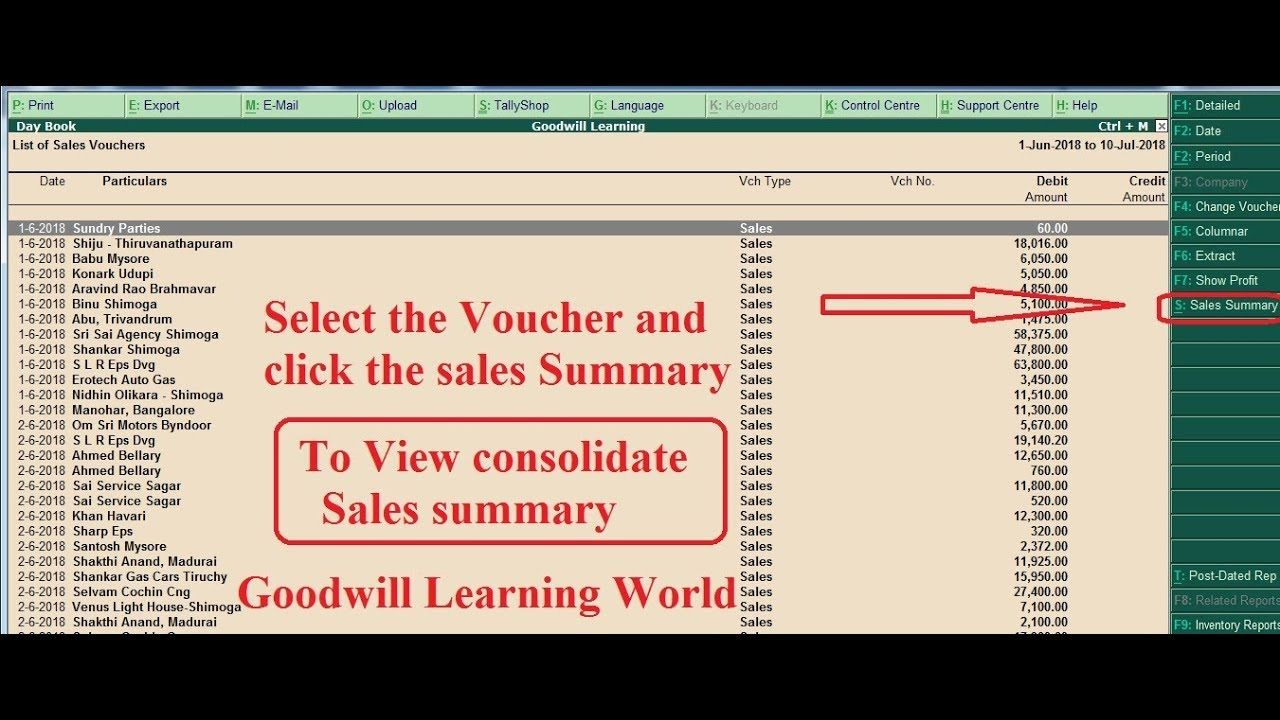 Tally TDL for Consolidated Sales Summary for selected voucher - view