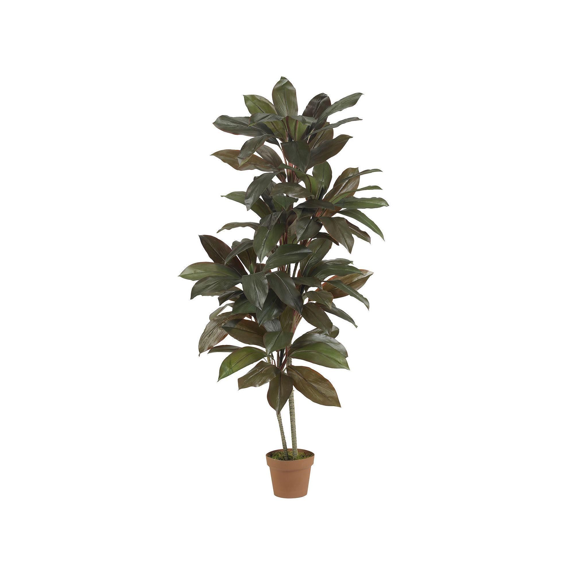 Nearly natural silk ft cordyline plant green products