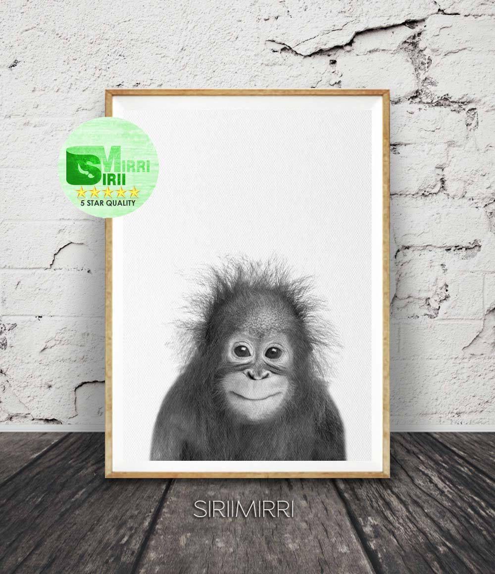 baby orangutan print nursery wall art baby safari animal print black and white baby monkey print baby animal poster orangutan photo