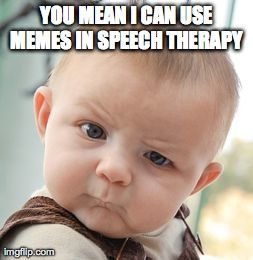 what do you meme using memes to target social skills speech room therapy and hilarious. Black Bedroom Furniture Sets. Home Design Ideas