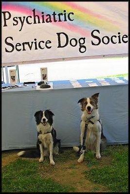 Psychiatric Service dogs?