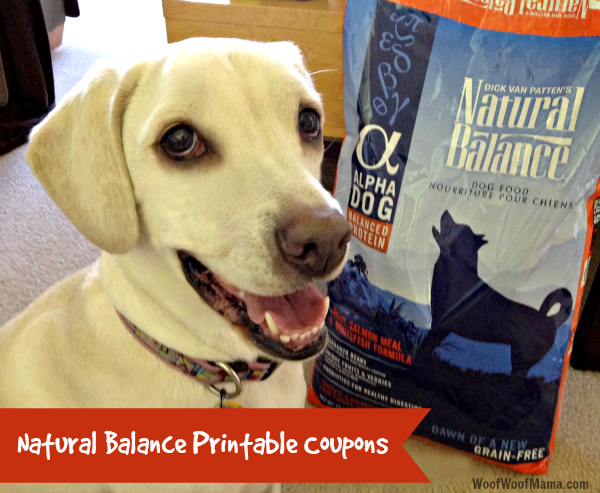 picture about Natural Balance Printable Coupons named Organic Harmony Printable Discount codes for Pet dog Meals, Cat Food items and