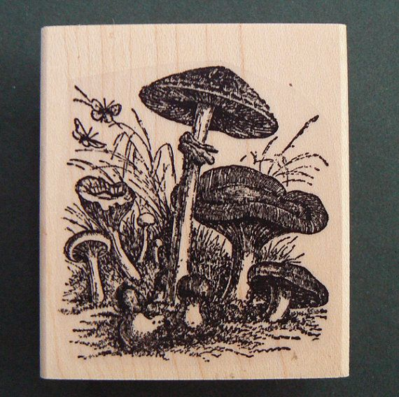 Hey, I found this really awesome Etsy listing at https://www.etsy.com/listing/62876567/mushrooms-rubber-stamp-p29