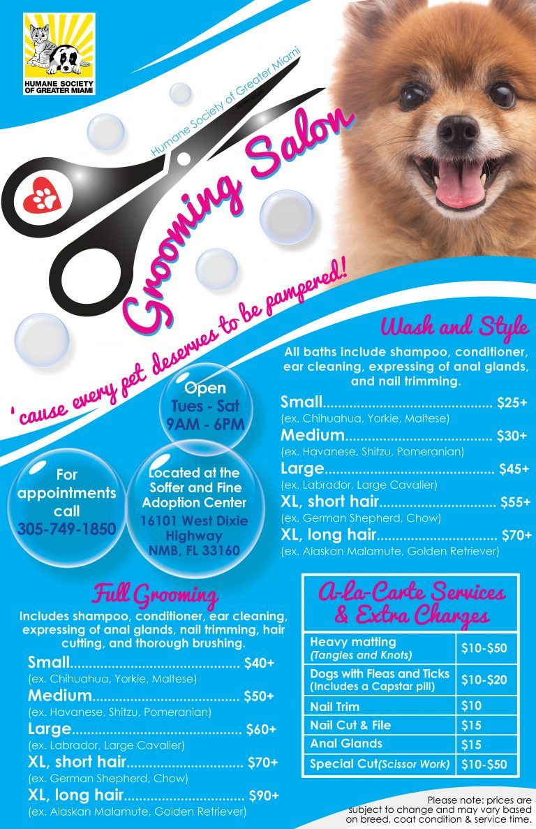 Grooming Salon Menu of Services 11×17 for web Pet