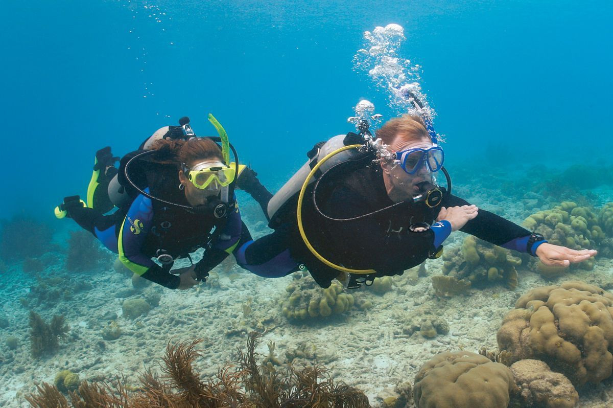 Scuba Diving Snorkeling Fort Lauderdale Sea