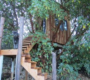 Tree Houses R' Us is the leading Treehouse Construction Companies on the market that provides a professional and reliable Custom Tree House to help you build your dreams in higher places. As one of the best Tree House Company, Tree Houses R' Us offers an exceptional services at a very reasonable prices. Visit http://www.treehousesrus.com/ for more information about their services.