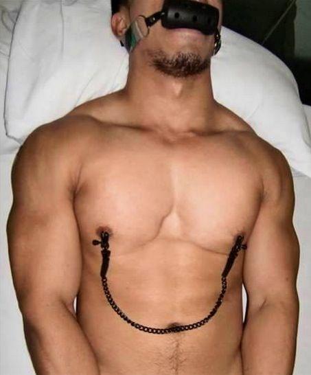 free male gay wreslting