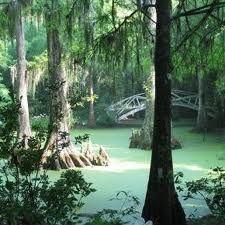 3d1b564215b26746fa0bdee3abafa182 - Magnolia Plantation And Gardens South Carolina