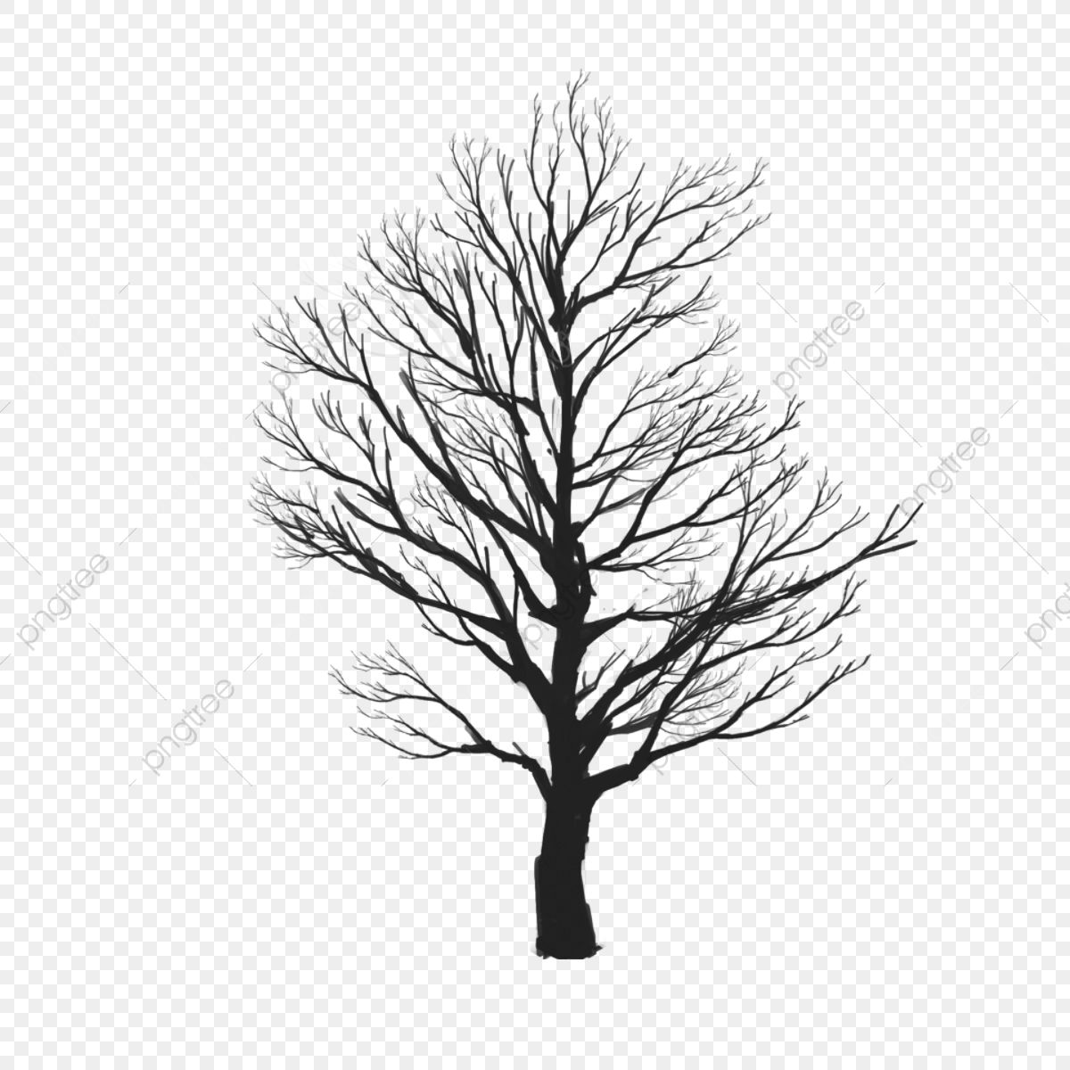 Tree Vector Clipart Tree Icons Tree Clipart Tree Cartoon Png Transparent Clipart Image And Psd File For Free Download Tree Clipart Watercolor Background Watercolor Trees