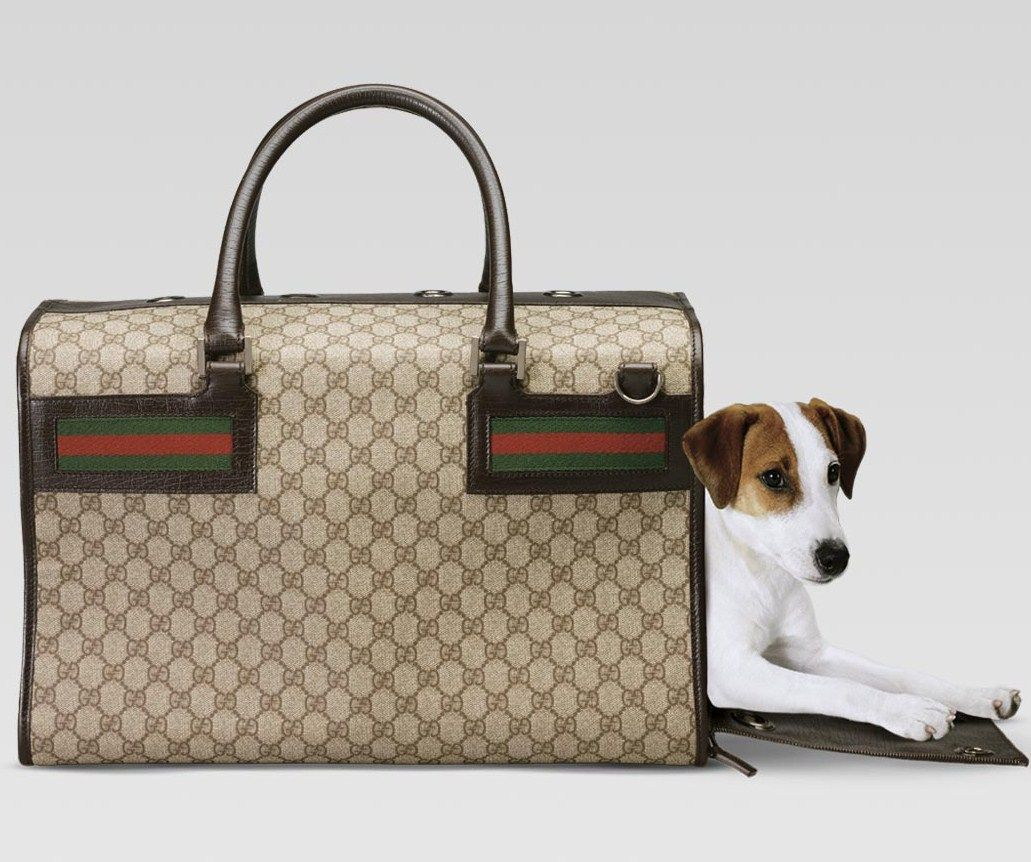 dear santa i need this gucci dog carrier thank you  my pet  - i've noticed that when it comes to designer accessories like handbags fanslove to match them with other accessories so if they buy a gucci handbag
