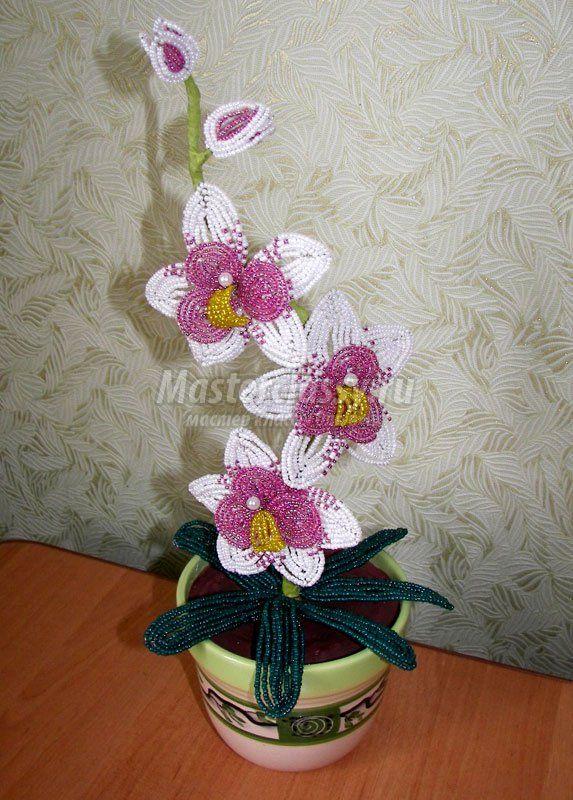 Своим рукам бисера орхидея