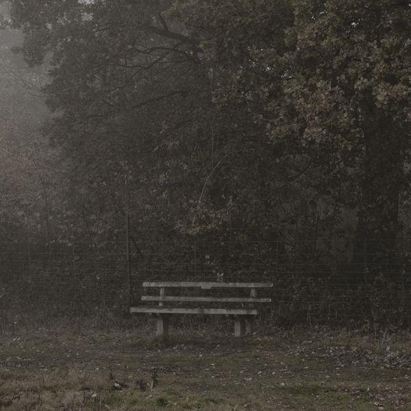 Fog by Matthew Piper, via Behance