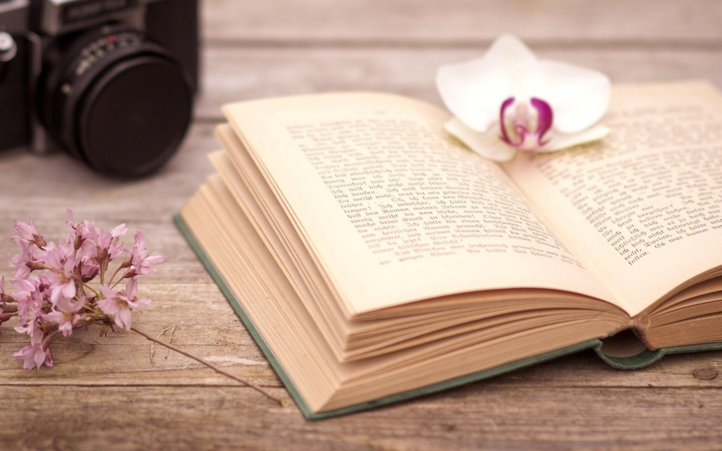 Download Wallpaper Mood, Book, Book, Pages, Leaves