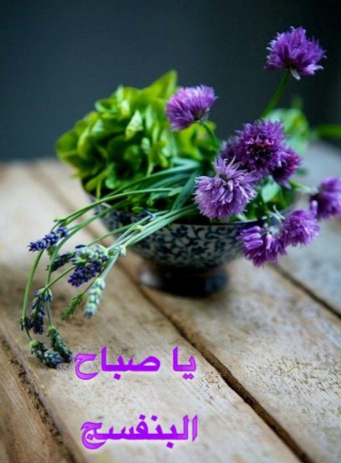 صباح الخير صباحكم سعيد صباح البنفسج أسعد الله أوقاتكم بكل خير Herbs Chive Blossom Purple Flowers