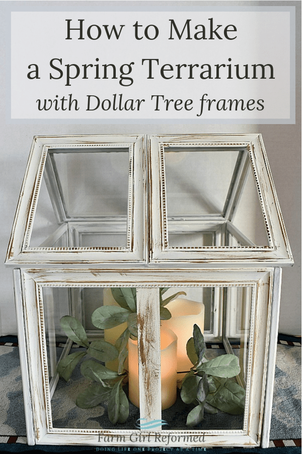 How to Make a Spring Terrarium with Dollar Tree Frames - Farm Girl Reformed