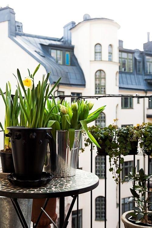 C U R A T E D S Y L Escape Balcony Garden Paris Ideas