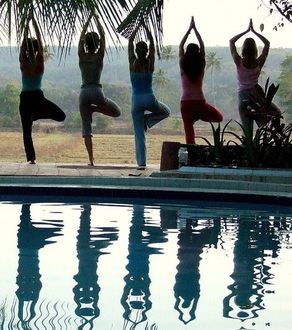 the best yoga poses for allergies  hatha yoga best yoga