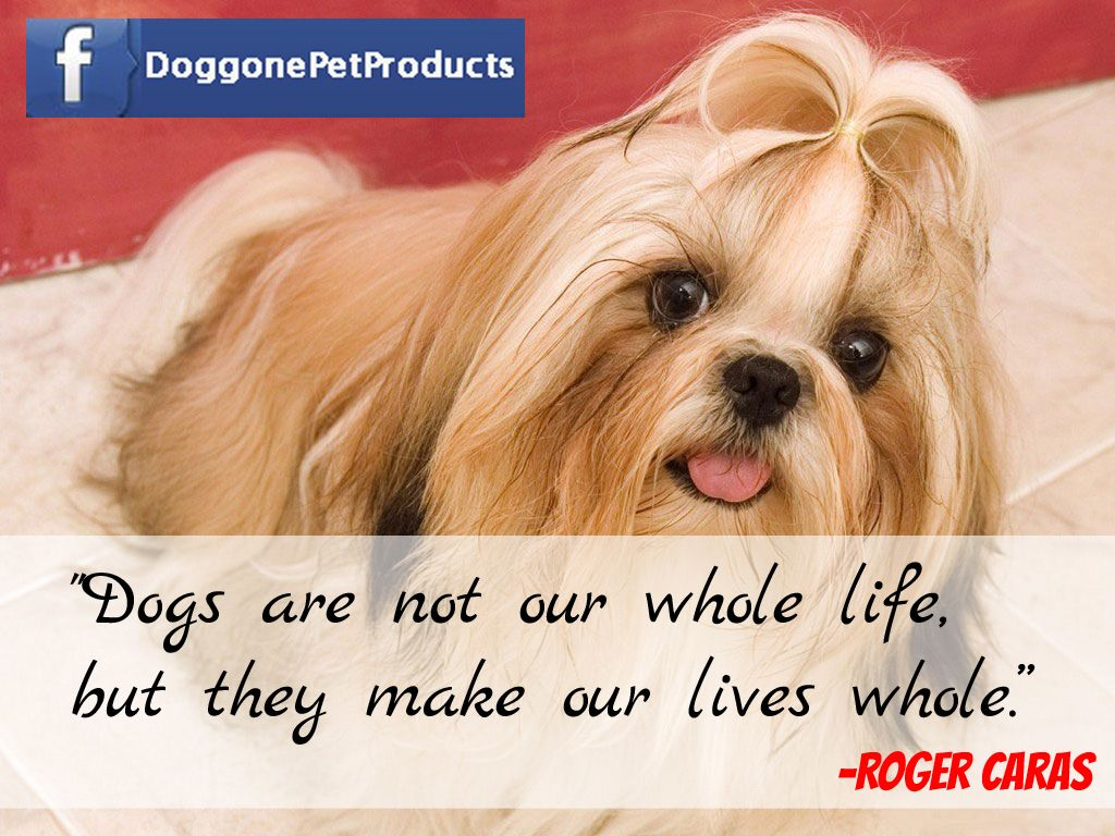 Dogs are not our whole life, but they make our lives whole. #dogs #pets #puppy #cute #quotes