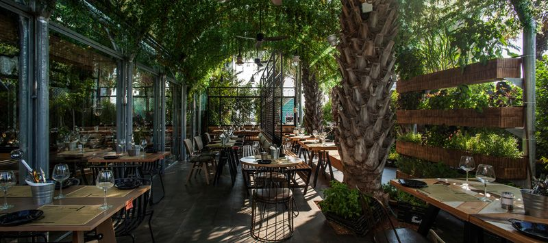 The Plants In This Restaurant Are Herbs That The Chef Uses To Cook With Restaurant Interior Design Interior Garden Kitchen Garden