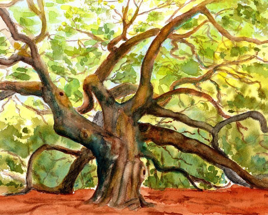 Angel Oak Tree South Carolina Tree watercolor painting