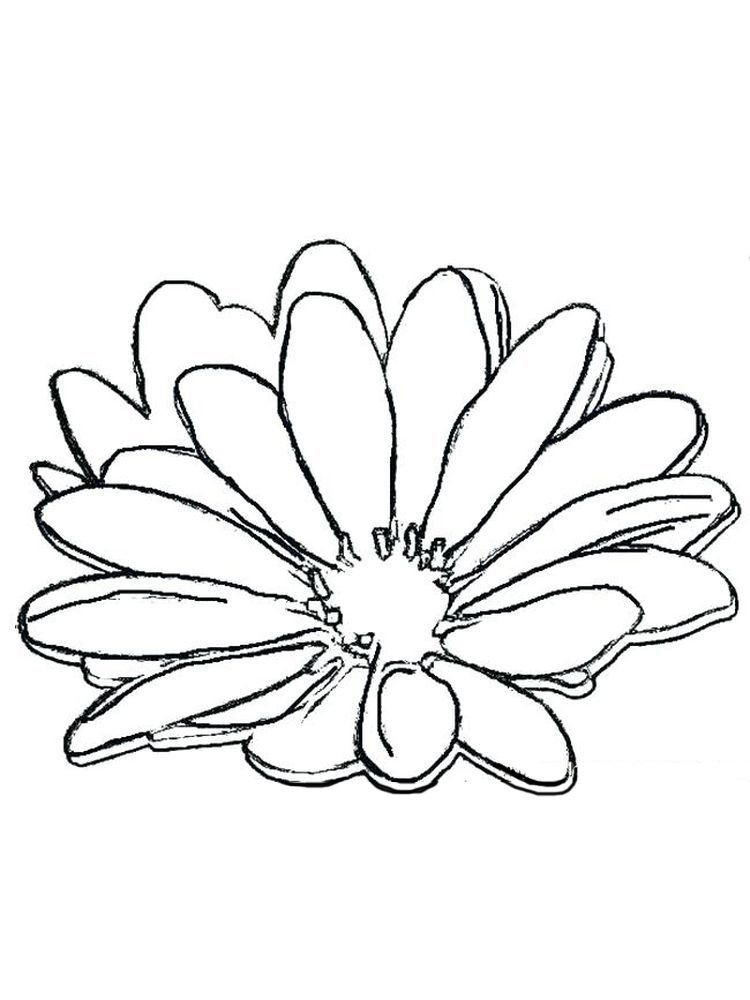 Free Coloring Pages Daisy Flower Daisy Is One Favorite Flower That Is Usually Combined In A Han Free Coloring Pages Garden Coloring Pages Snake Coloring Pages
