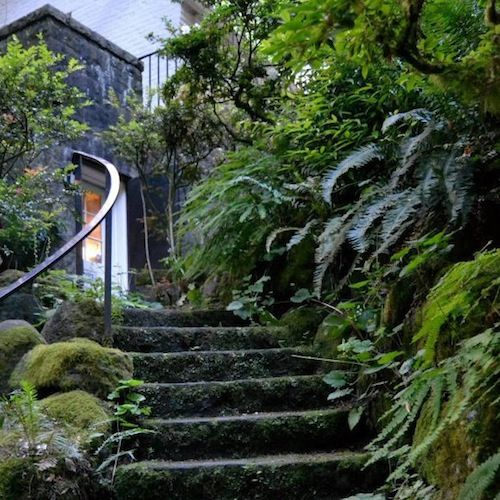 Beautiful Places In Portland Oregon: 7 Magnificent Reasons To Visit Leach Botanical Garden