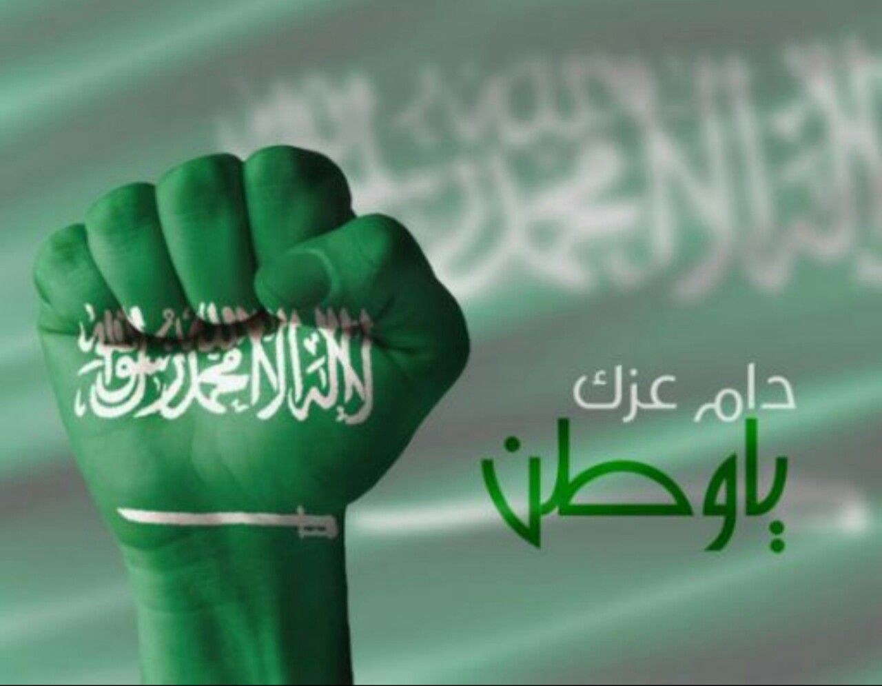 العيد الوطني السعودي 23 سبتمبر غرة الميزان Saudi Arabia Flag National Days In September Prince Mohammed