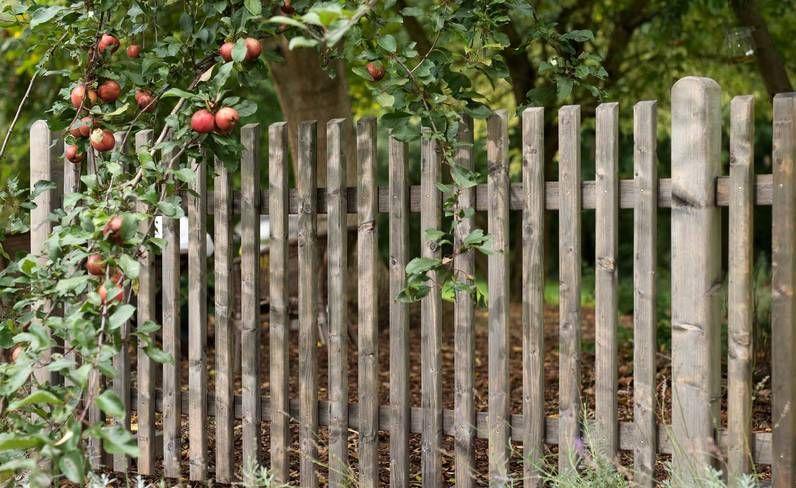 Scheerer Komfort Zaune Zaun Haus Und Garten Vorgarten